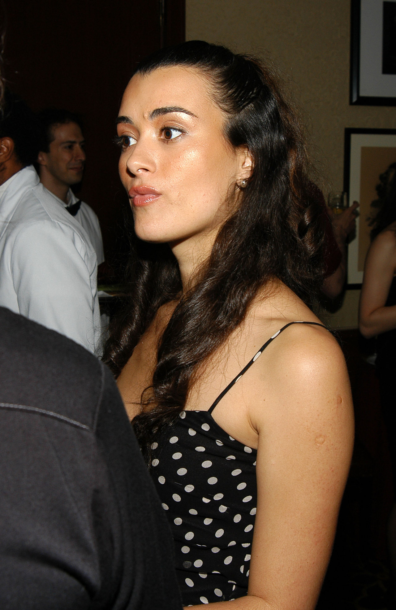 Cote De Pablo leaked wallpapers