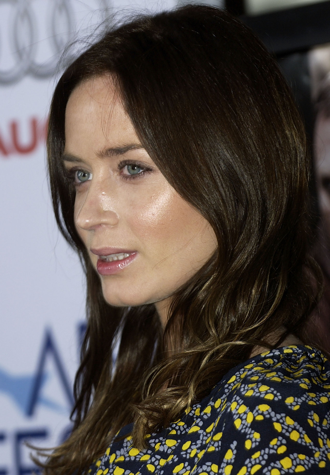 Emily Blunt leaked wallpapers