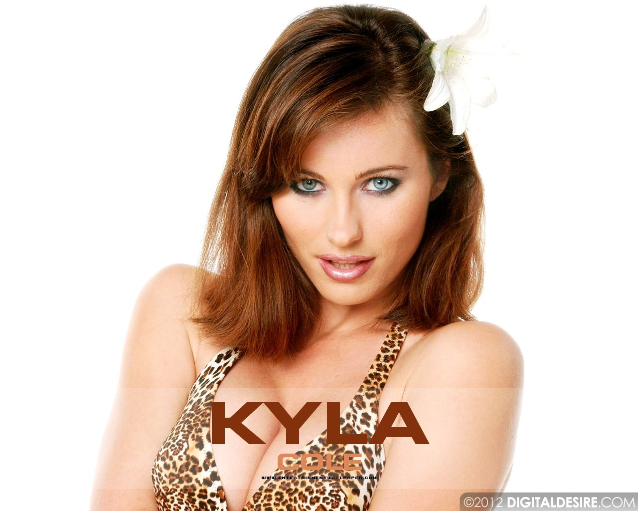 Kyla Cole leaked wallpapers