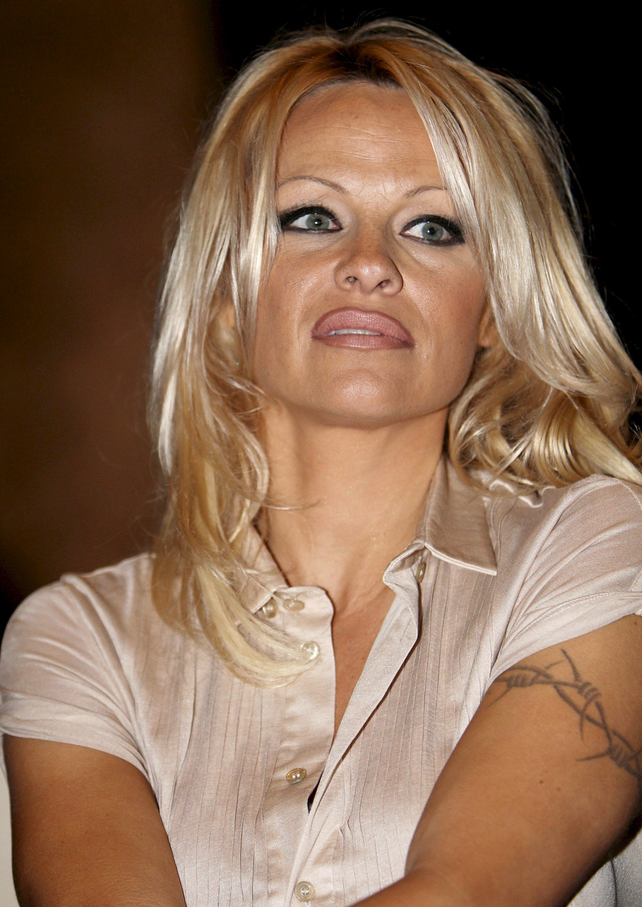 Pamela Anderson leaked photos