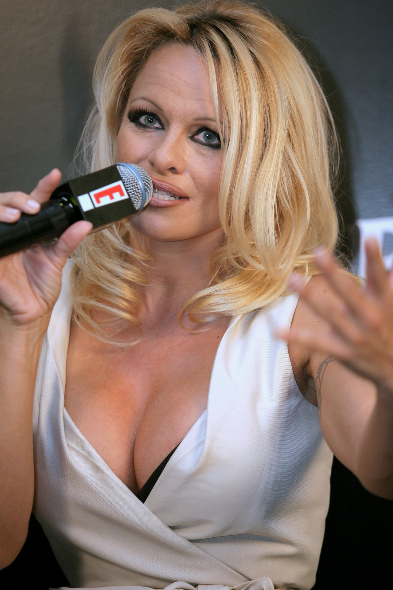 Pamela Anderson leaked wallpapers (109485)