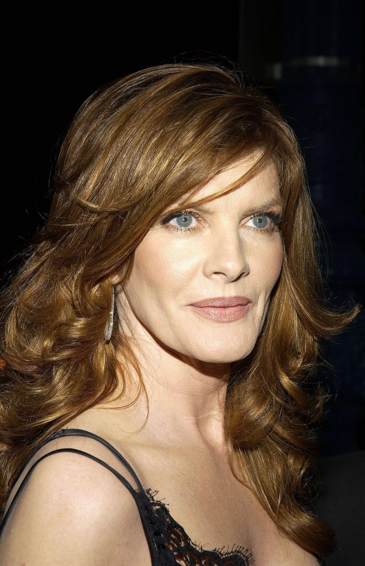 Rene Russo leaked wallpapers